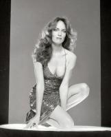 Catherine Bach in hot dress