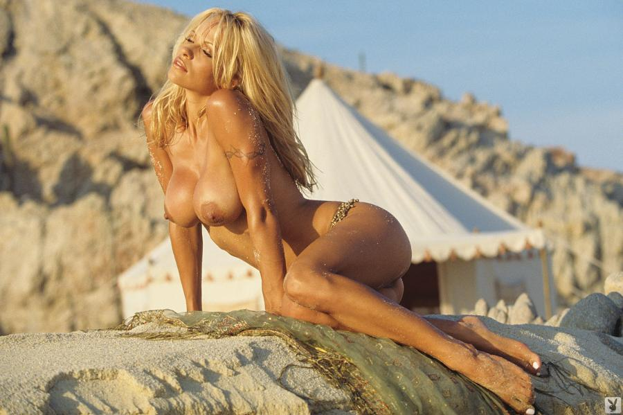 Pamella anderson boobs