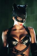 Halle Berry as hot catwoman