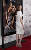 87858_s_ah_love_and_other_drugs_opening_night_gala_afi_fest_20101104_30_122_108lo.jpg