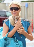 57642__by_William_Paris_Hilton_71_123_634lo.jpg