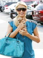 57933__by_William_Paris_Hilton_11_123_376lo.jpg